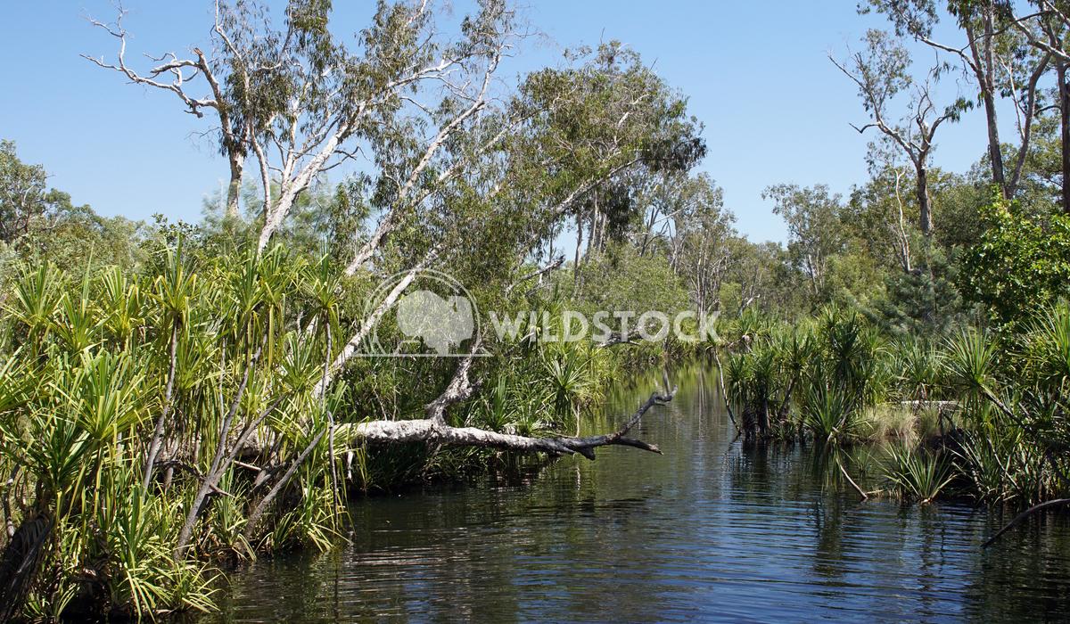 Nitmiluk National Park, Australia 14 Alexander Ludwig Landscape of the Nitmiluk National Park, Australia