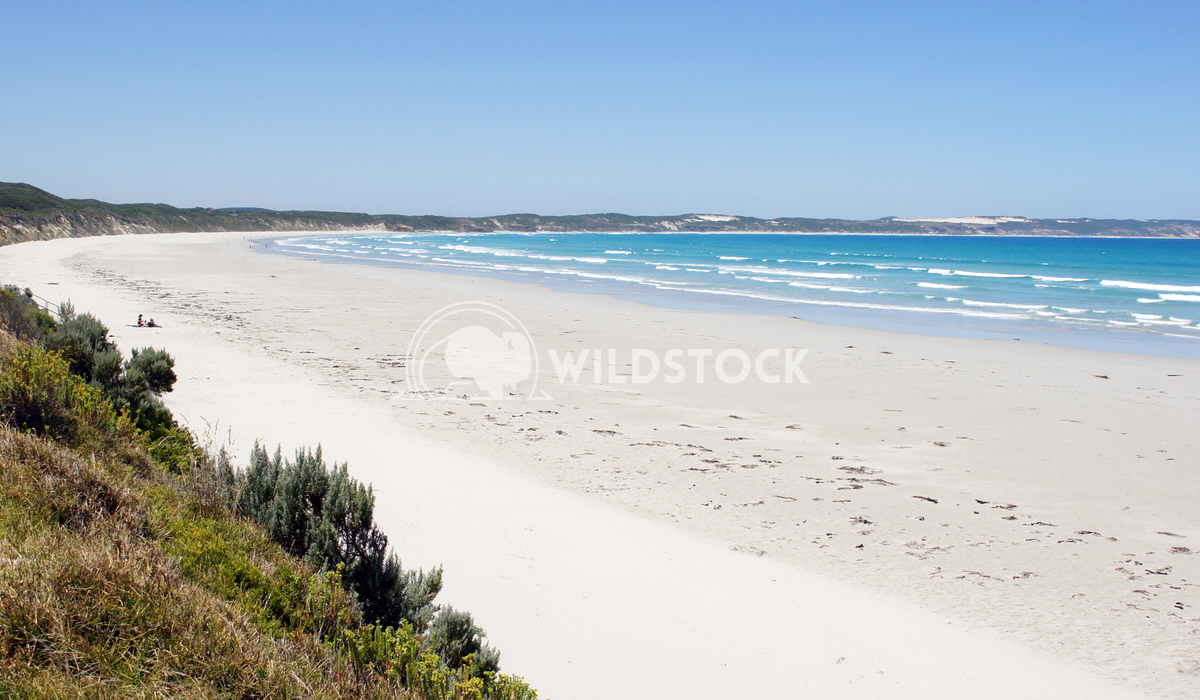 Cape Bridgewater, Victoria, Australia 2 Alexander Ludwig Panoramic view over Shelly Beach on Cape Bridgewater close to P