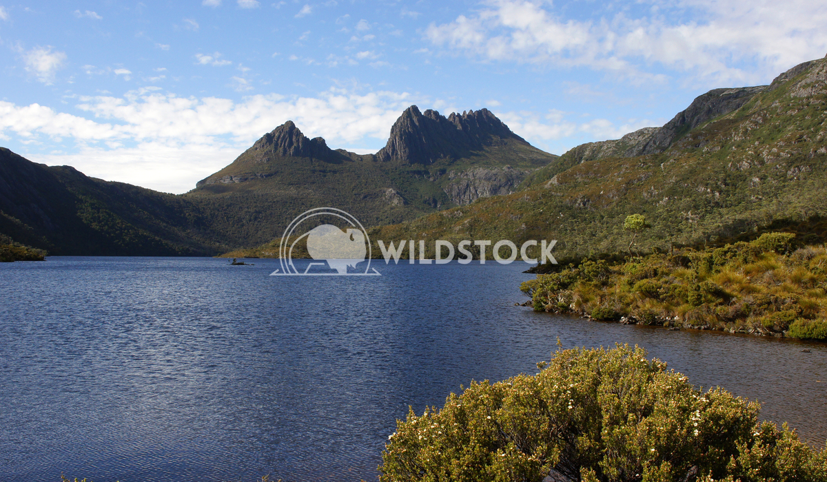 Cradle Mountain National Park, Tasmania, Australia 2 Alexander Ludwig Cradle Mountain National Park, Tasmania, Australia