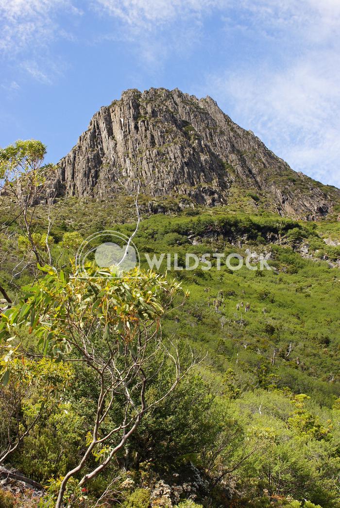 Cradle Mountain National Park, Tasmania, Australia 6 Alexander Ludwig Cradle Mountain National Park, Tasmania, Australia