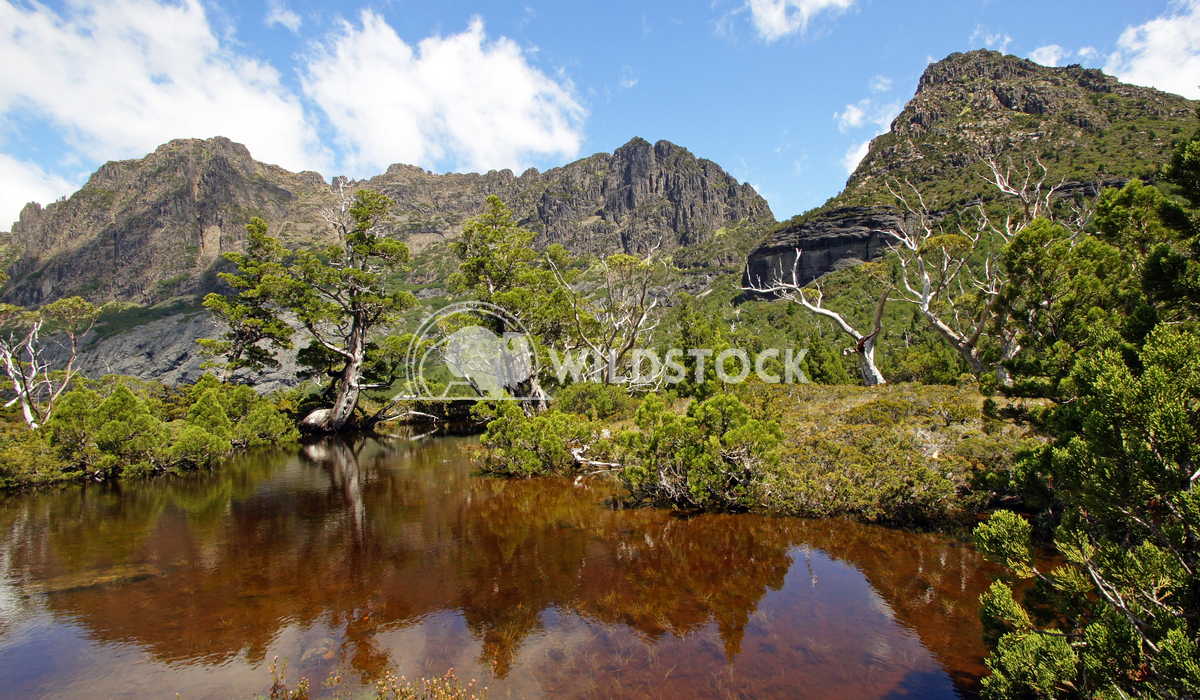 Cradle Mountain National Park, Tasmania, Australia 9 Alexander Ludwig Cradle Mountain National Park, Tasmania, Australia