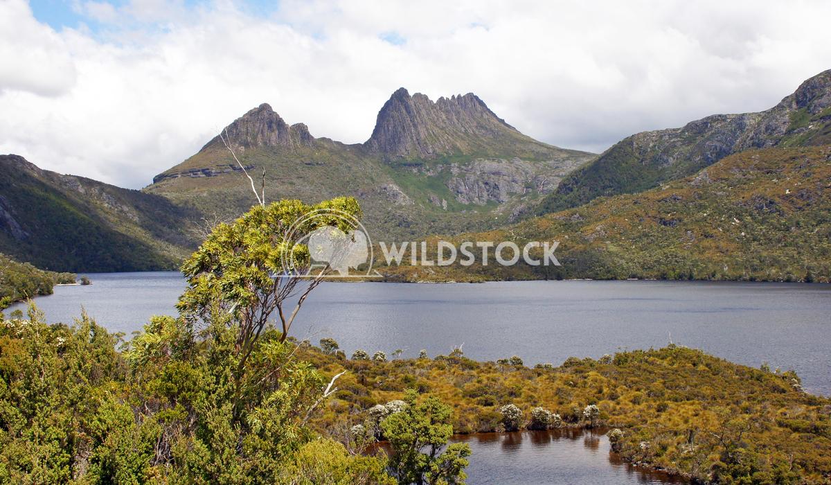 Cradle Mountain National Park, Tasmania, Australia 12 Alexander Ludwig Cradle Mountain National Park, Tasmania, Australi