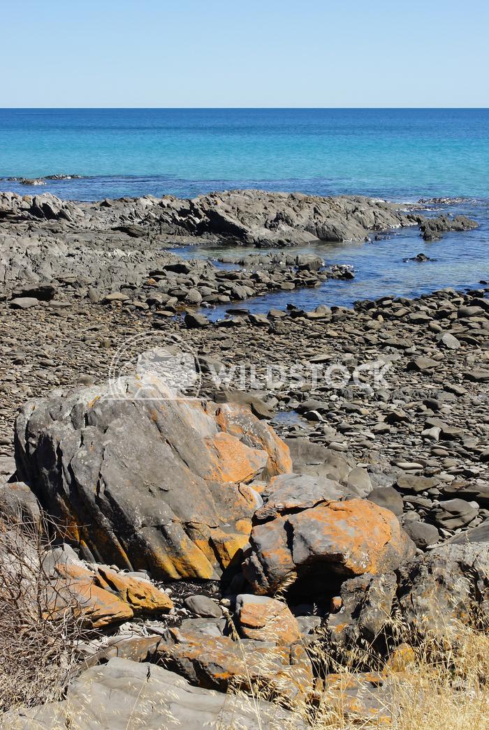 Kangaroo Island, South Australia 2 Alexander Ludwig Coast close to Penneshaw, Kangaroo Island, South Australia