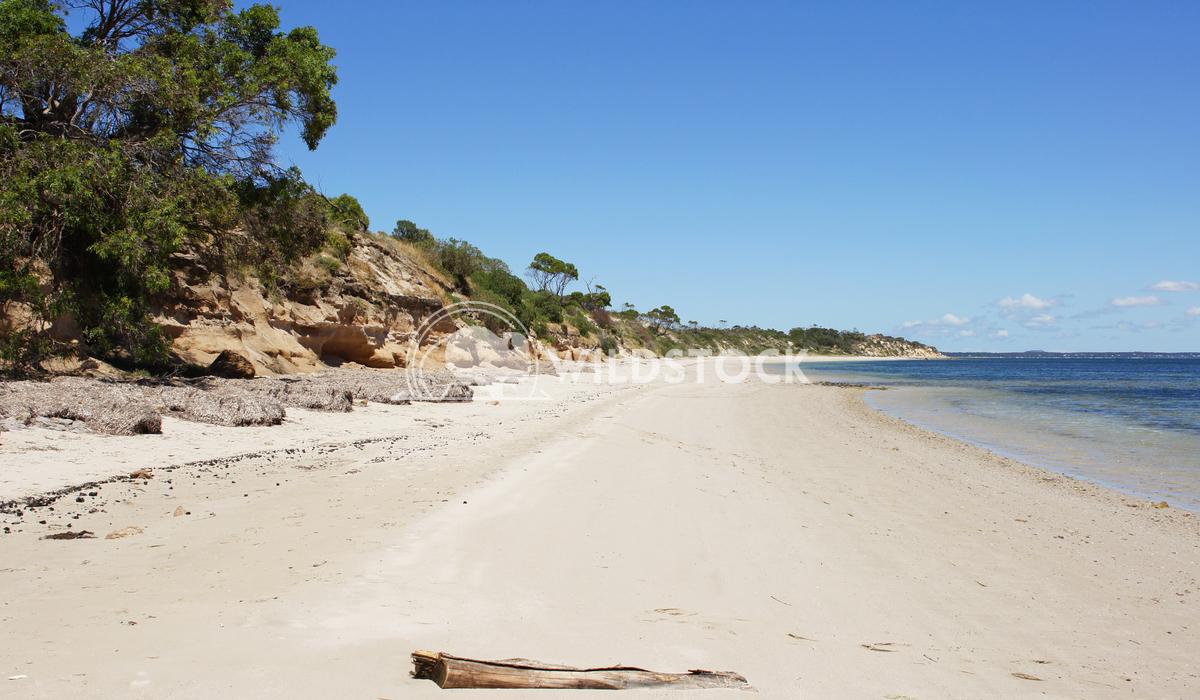 Kangaroo Island, South Australia 3 Alexander Ludwig Baudin Beach on Kangaroo Island, South Australia