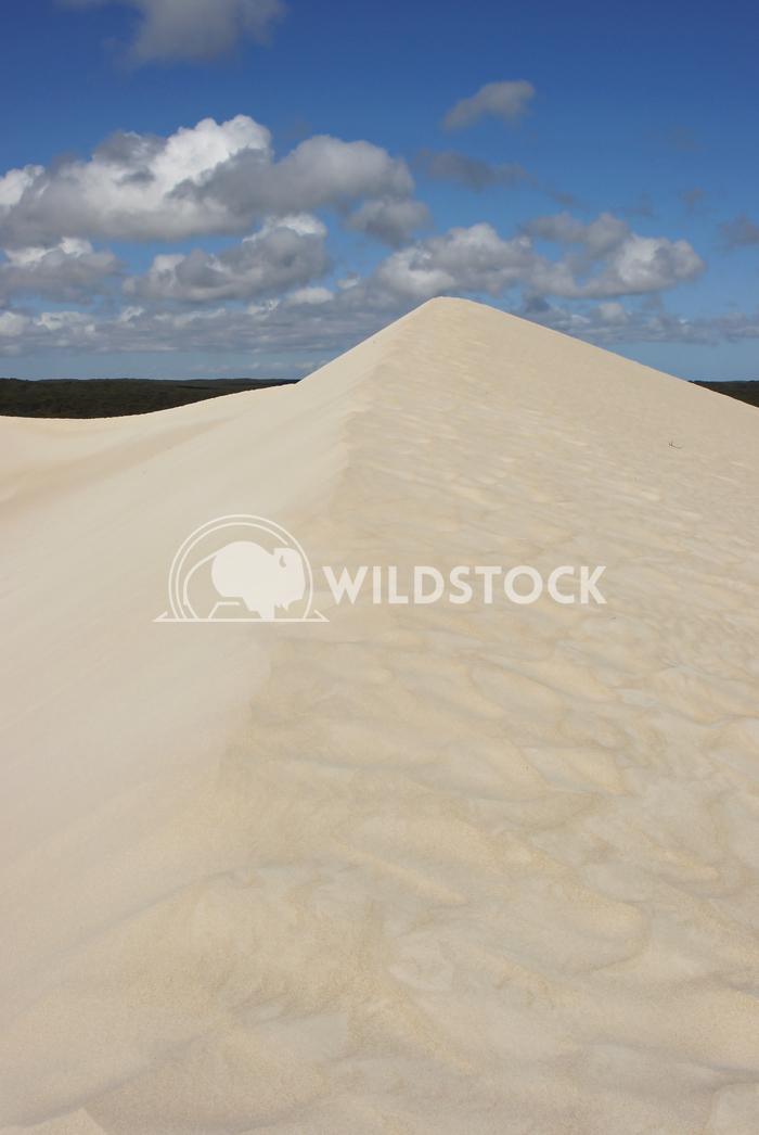 Little Sahara, Kangaroo Island, South Australia 4 Alexander Ludwig Dunes of Little Sahara, Kangaroo Island, South Austra