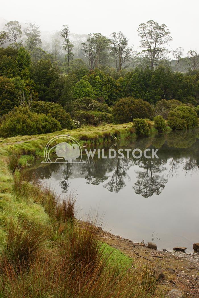 Cradle Mountain National Park, Tasmania, Australia Alexander Ludwig Cradle Mountain National Park, Tasmania, Australia