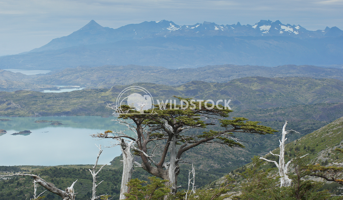 Torres del Paine, Chile, South America  10 Alexander Ludwig Landscape of the Torres del Paine National Park, Chile, Sout