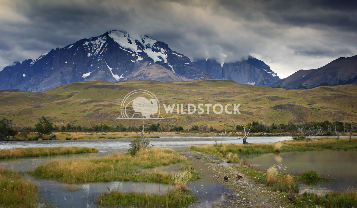 Torres del Paine, Chile, South America  7 Alexander Ludwig Landscape of the Torres del Paine National Park, Chile, South