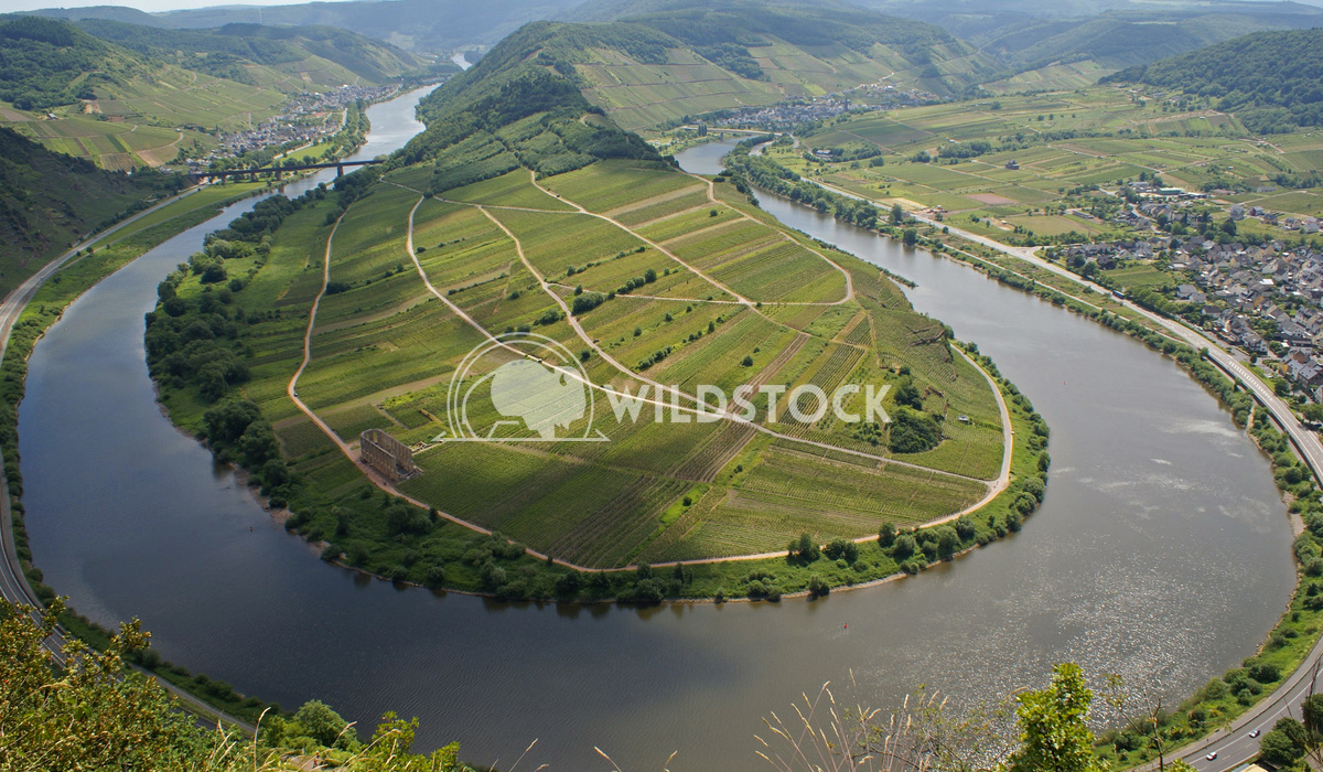 Moselle river loop, Bremm, Germany, Europe 1 Alexander Ludwig Moselle river loop on a dull autumnal day, Bremm, Germany,