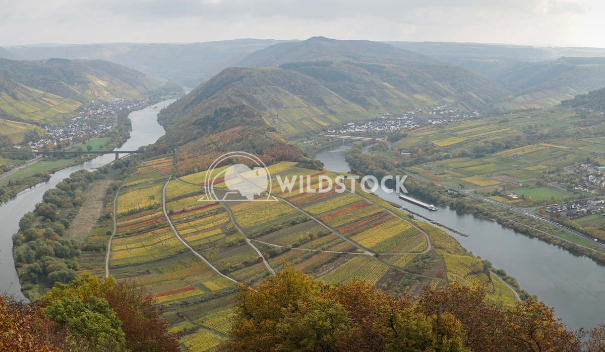 Moselle river loop, Bremm, Germany, Europe 2 Alexander Ludwig Moselle river loop on a dull autumnal day, Bremm, Germany,