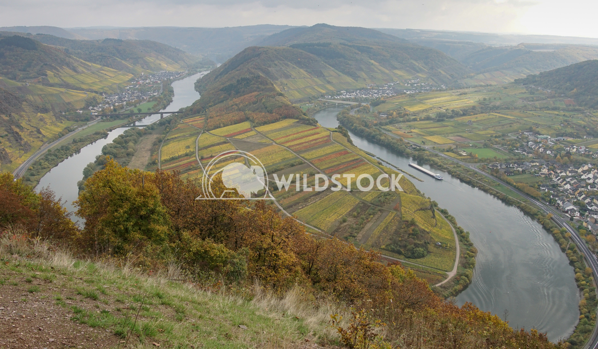 Moselle river loop, Bremm, Germany, Europe 3 Alexander Ludwig Moselle river loop on a dull autumnal day, Bremm, Germany,