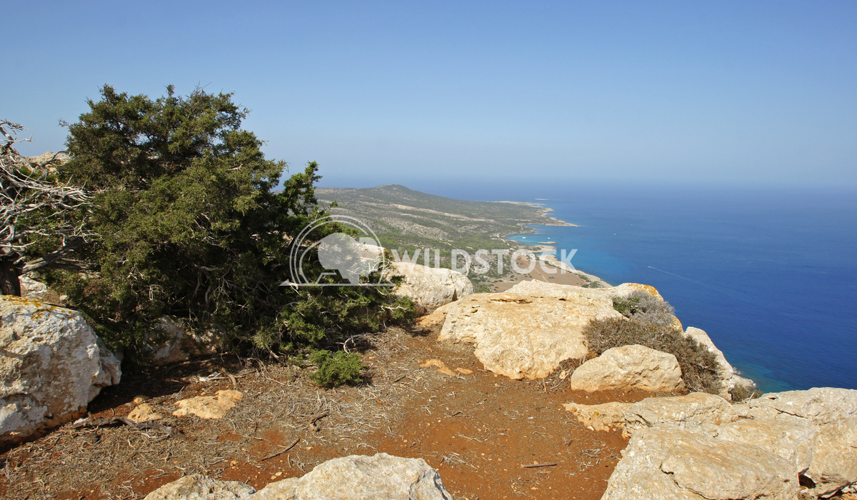 Akamas Peninsula, Cyprus, Europe 3 Alexander Ludwig Landscape of Akamas Peninsula in the north of the Cyprus island, Eur