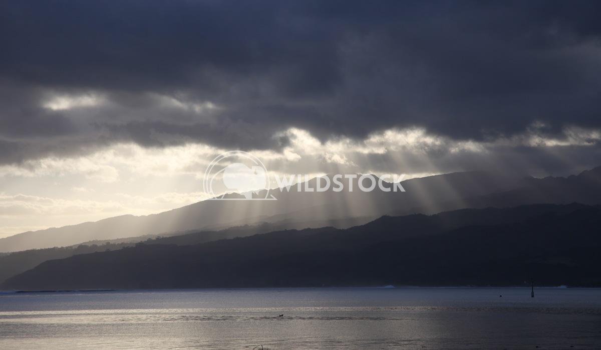 Rays over Tahiti Henry McCluster