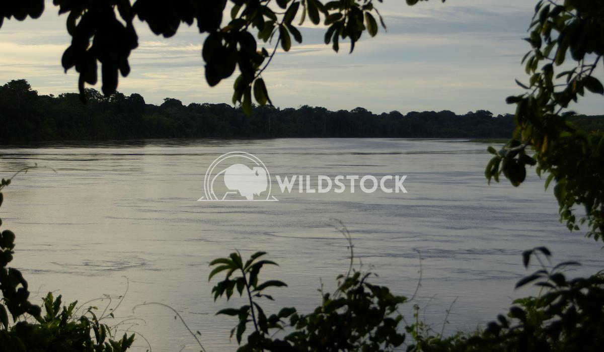 Big River Winding Frank  Castro