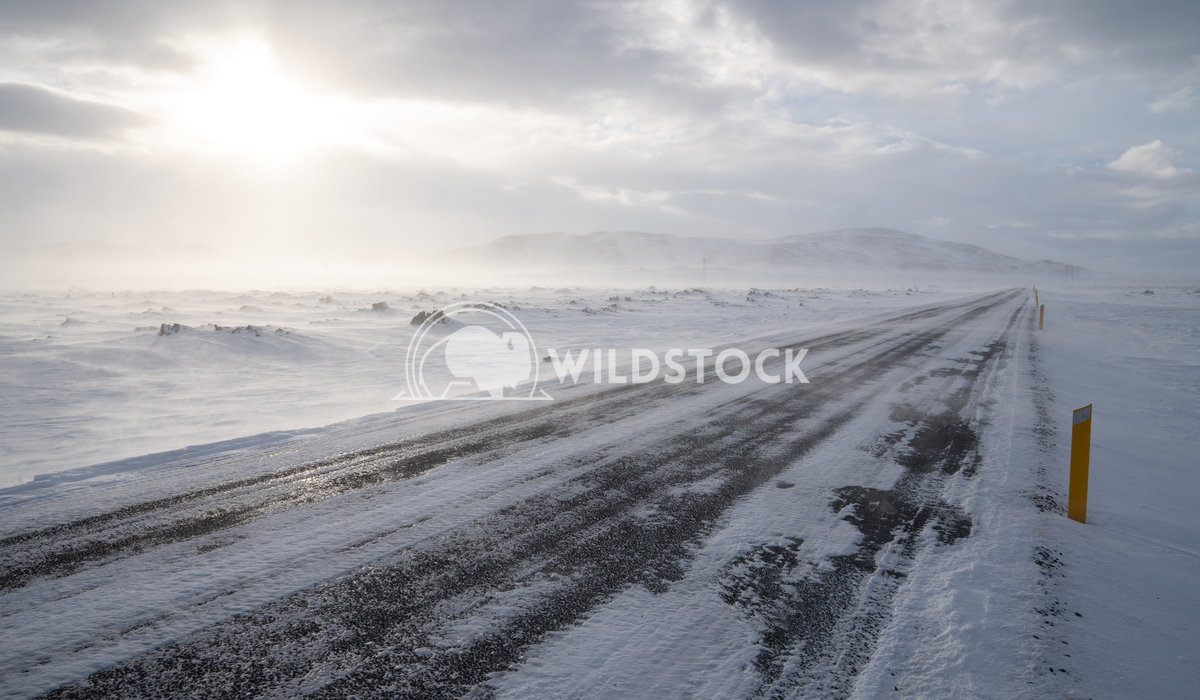 Blizzard, Iceland, Europe 4 Alexander Ludwig Road into the blizzard, winter in Iceland, Europe
