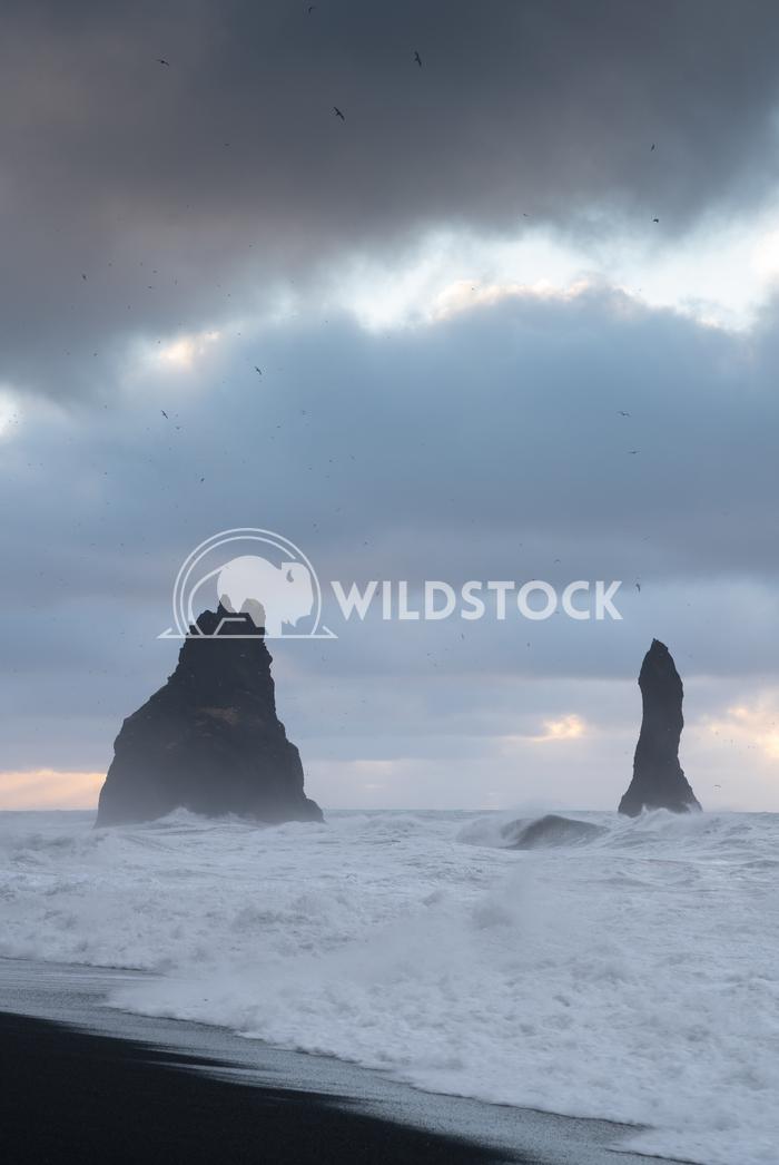 Reynisfjara close to Vik, Iceland, Europe 8 Alexander Ludwig Rock spire of Reynisdrangur, coast of Reynisfjara close to