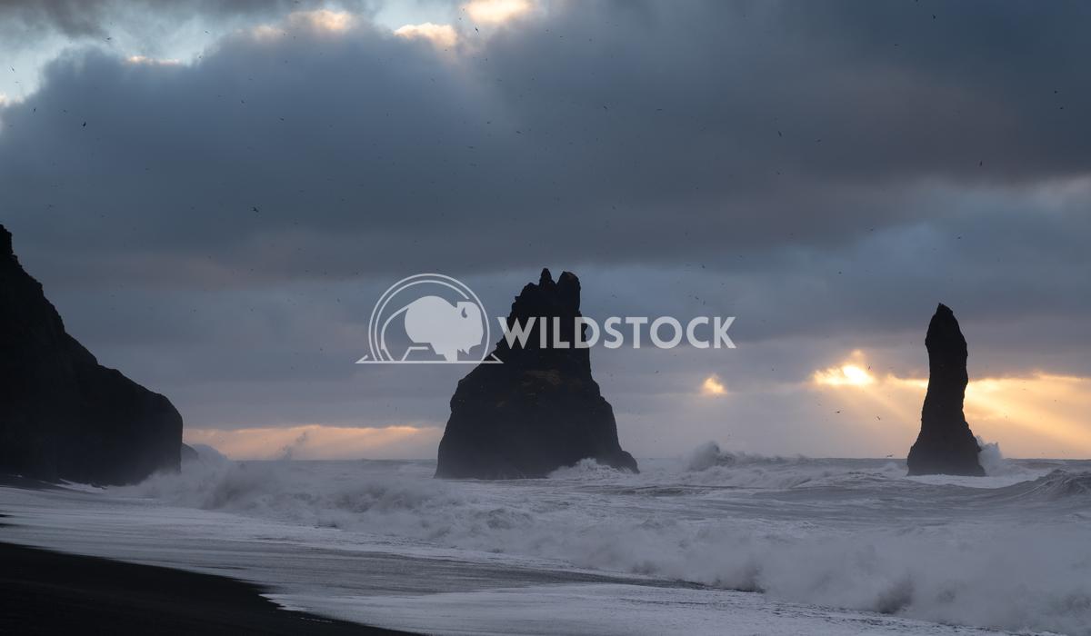 Reynisfjara close to Vik, Iceland, Europe 9 Alexander Ludwig Rock spire of Reynisdrangur, coast of Reynisfjara close to