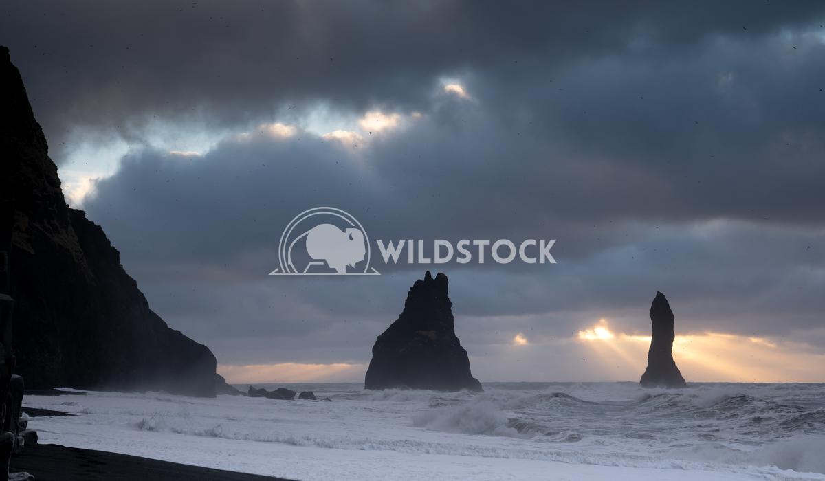 Reynisfjara close to Vik, Iceland, Europe 10 Alexander Ludwig Rock spire of Reynisdrangur, coast of Reynisfjara close to