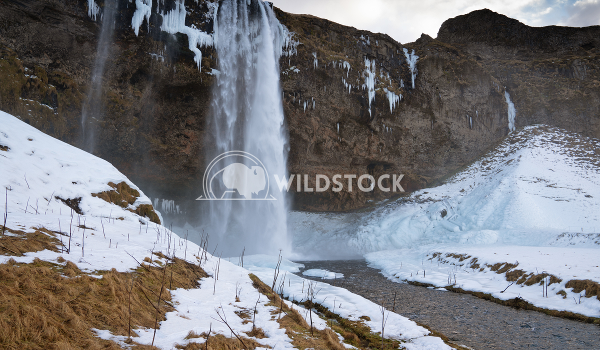 Seljalandsfoss, Iceland, Europe 7 Alexander Ludwig Beautiful Seljalandsfoss on a cold winter day, Iceland, Europe