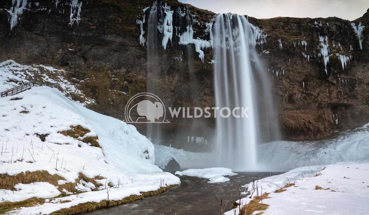 Seljalandsfoss, Iceland, Europe 5 Alexander Ludwig Beautiful Seljalandsfoss on a cold winter day, Iceland, Europe