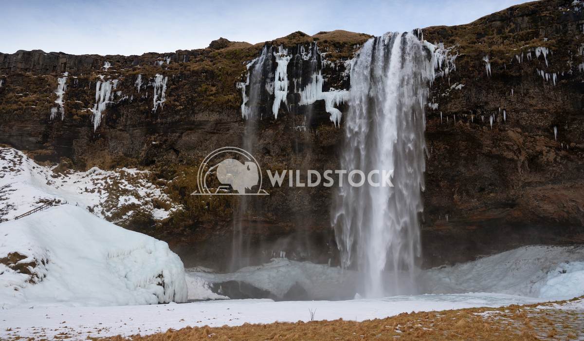 Seljalandsfoss, Iceland, Europe 1 Alexander Ludwig Beautiful Seljalandsfoss on a cold winter day, Iceland, Europe