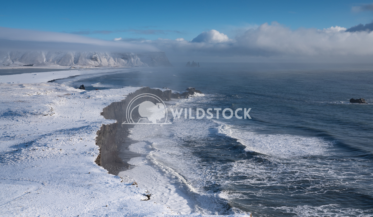 Cape Dyrholaey, Iceland 5 Alexander Ludwig Panoramic image of the coastal landscape of Cape Dyrholaey on a winter day wi