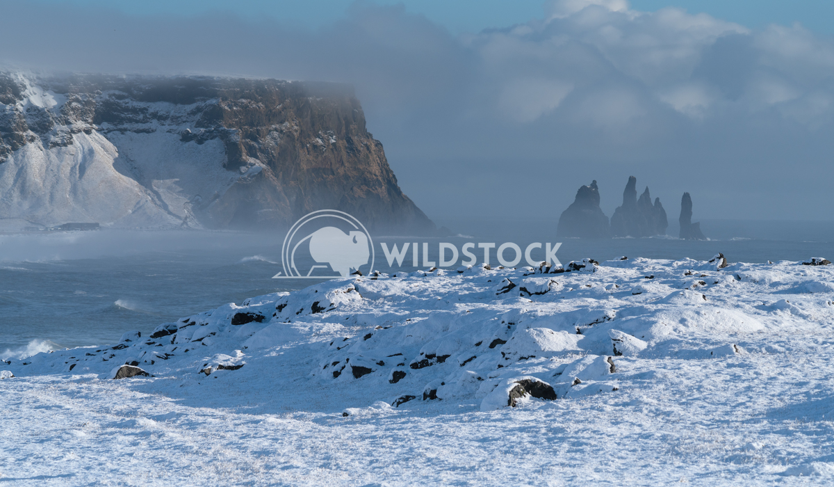 Cape Dyrholaey, Iceland 6 Alexander Ludwig Panoramic image of the coastal landscape of Cape Dyrholaey on a winter day wi