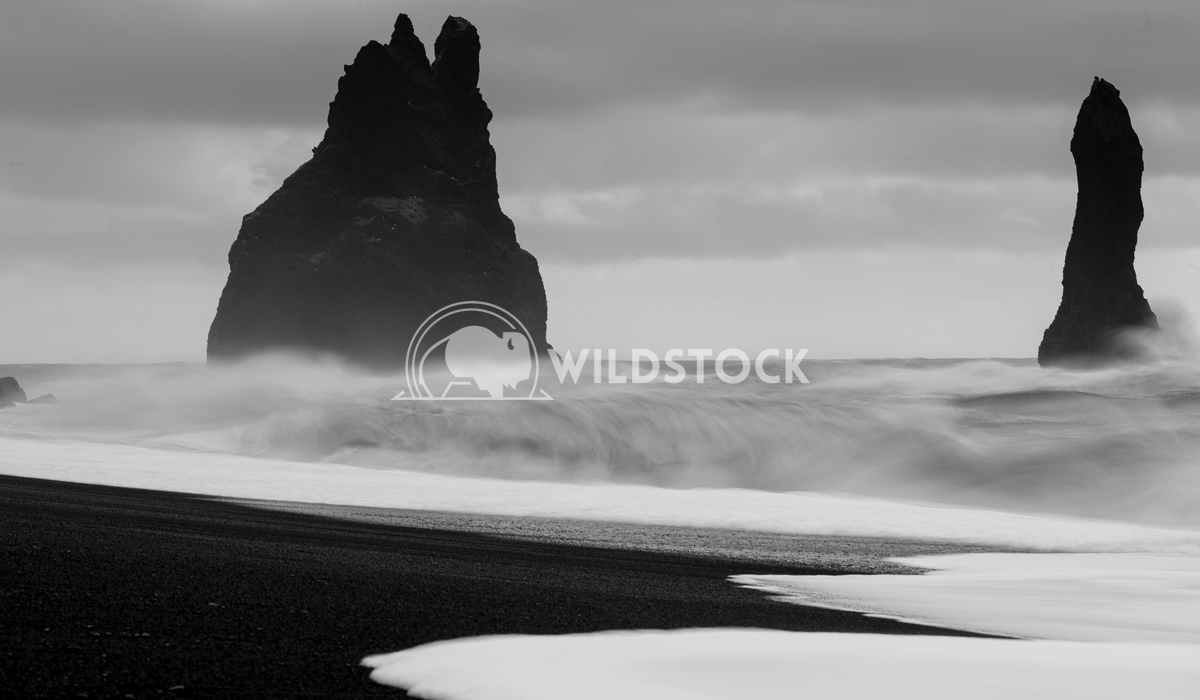 Reynisfjara close to Vik, Iceland, Europe 19 Alexander Ludwig Panoramic image of the rock spires of Reynisdrangur with b