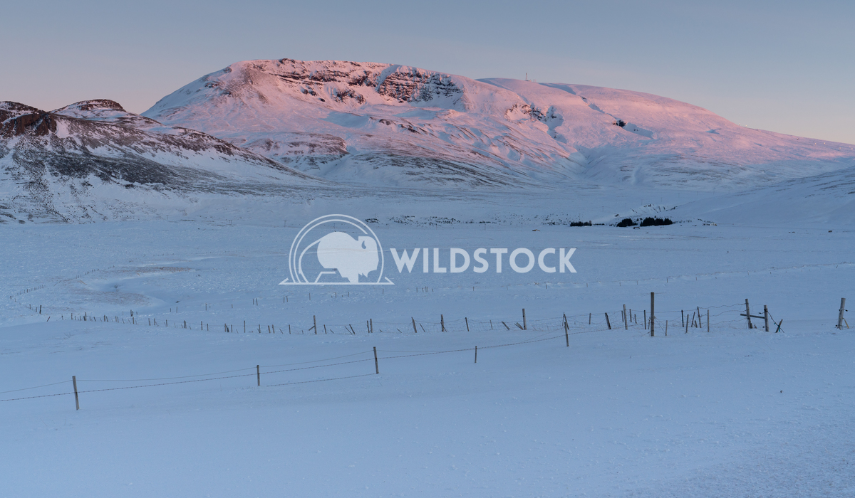 Snow-covered mountains, Iceland, Europe 3 Alexander Ludwig Sunrise over snow-covered mountains, Iceland, Europe