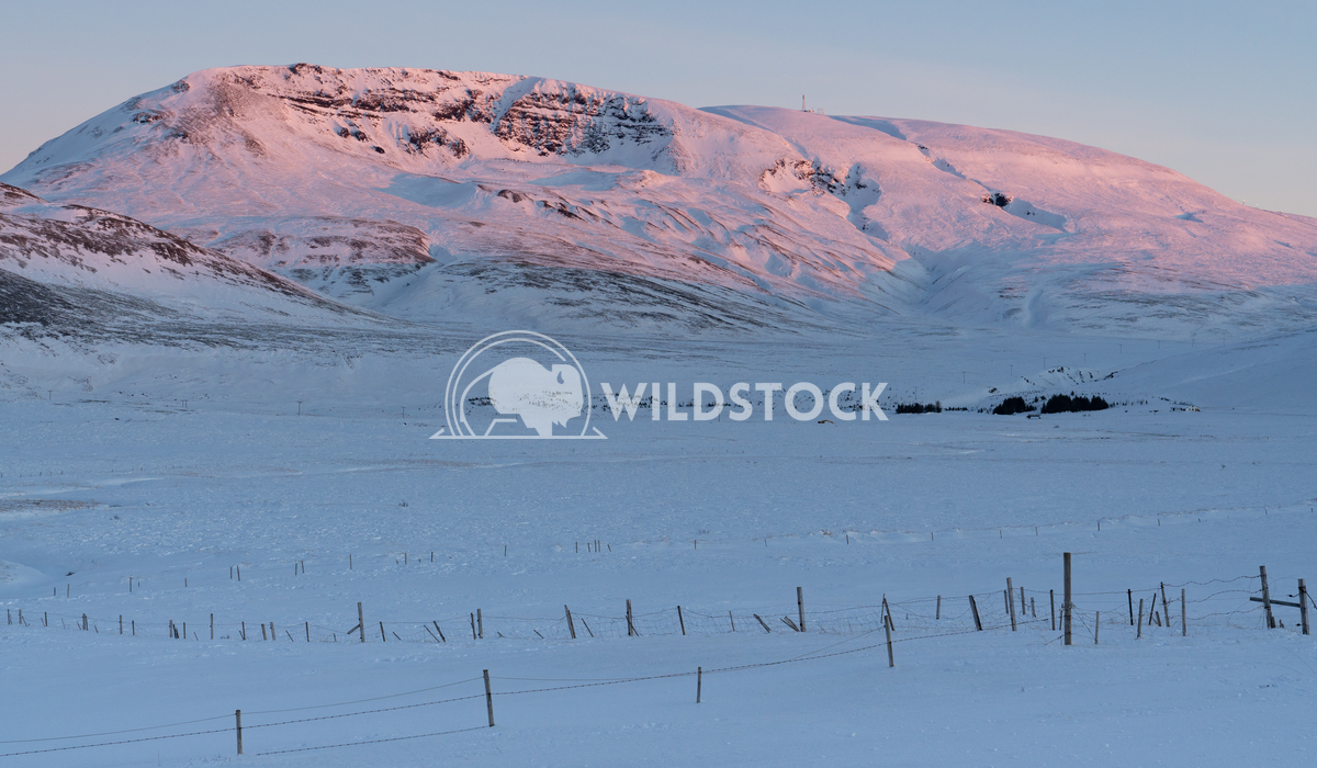 Snow-covered mountains, Iceland, Europe 4 Alexander Ludwig Sunrise over snow-covered mountains, Iceland, Europe