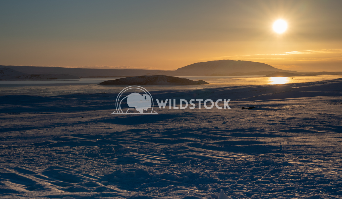 Snow-covered mountains, Iceland, Europe 11 Alexander Ludwig Sunrise over snow-covered mountains, Iceland, Europe