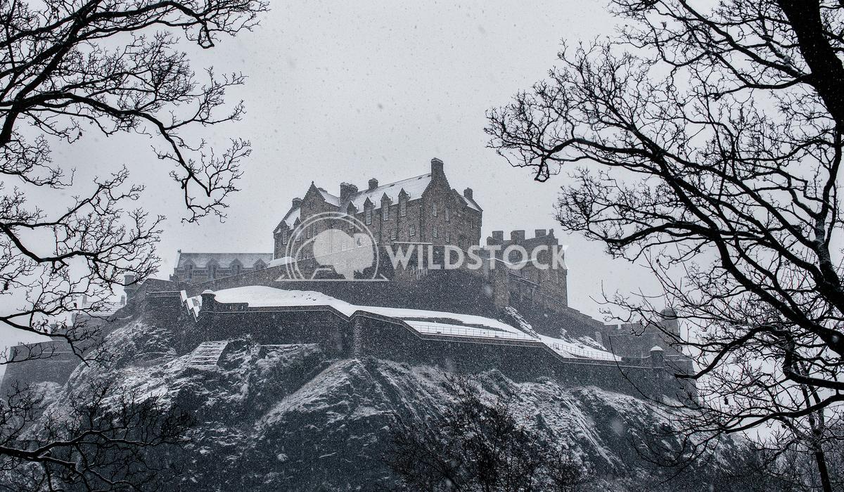 White Castle Alex  Gutierrez Edinburgh castle covered in snow