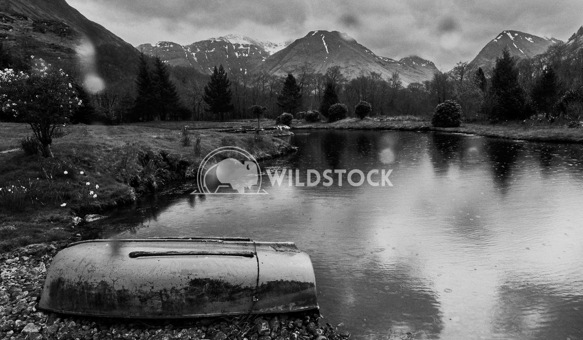 Calm and quiet lake. Alex  Gutierrez