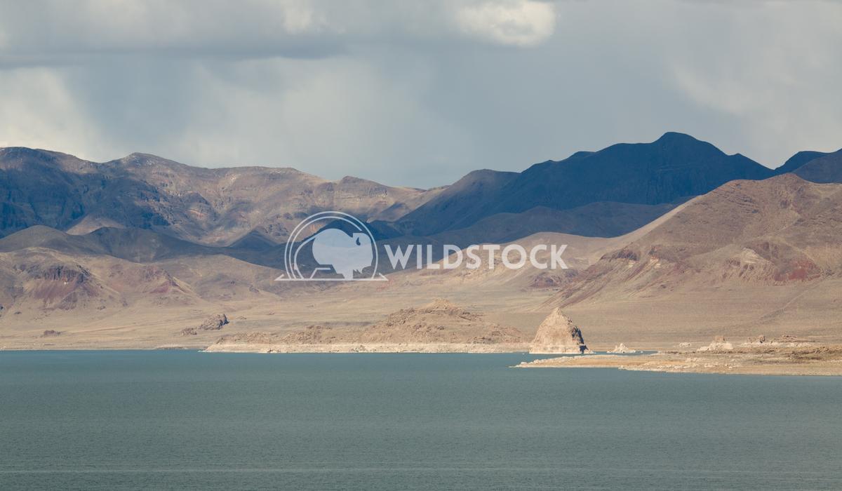 Pyramid Lake Pastels Henry McCluster