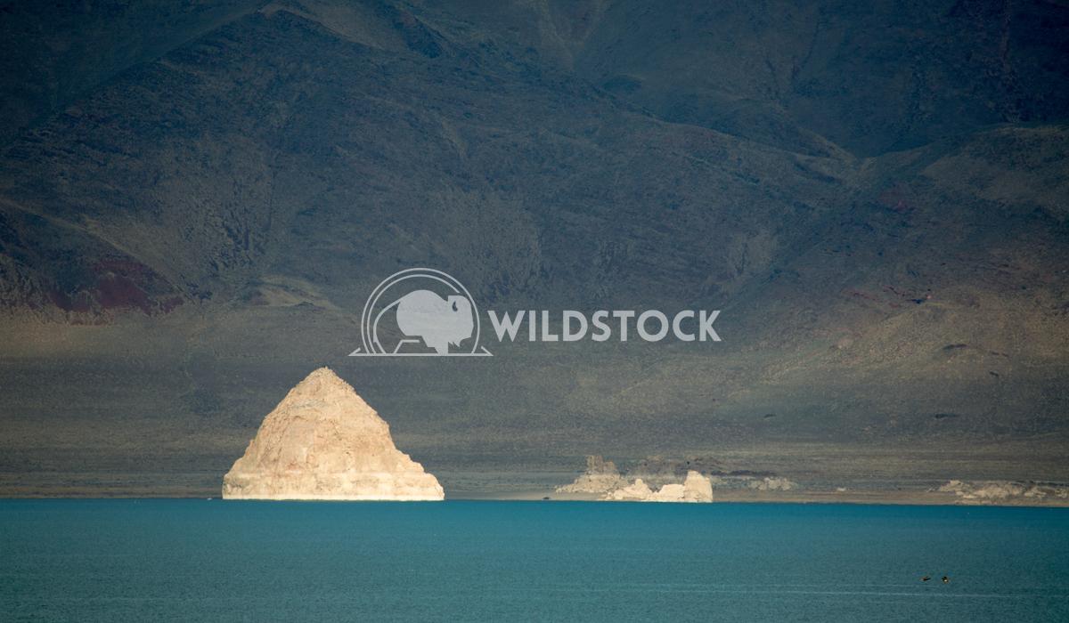 Pyramid Lake Popper Henry McCluster