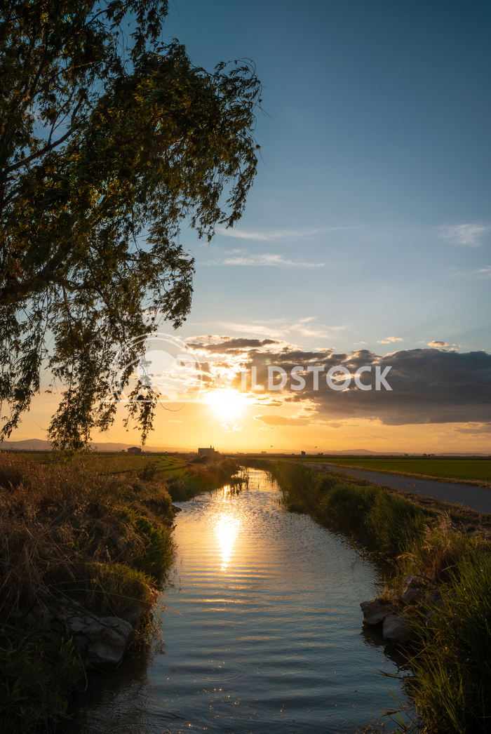 Sunset of the sun in the river. Jaime Navas