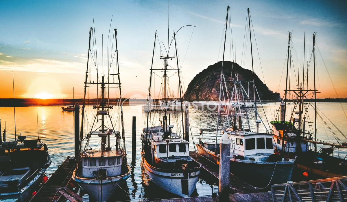 Fishing Dock Carolyne Vowell Fishing boats at dock at sunset in Morro Bay, CA.