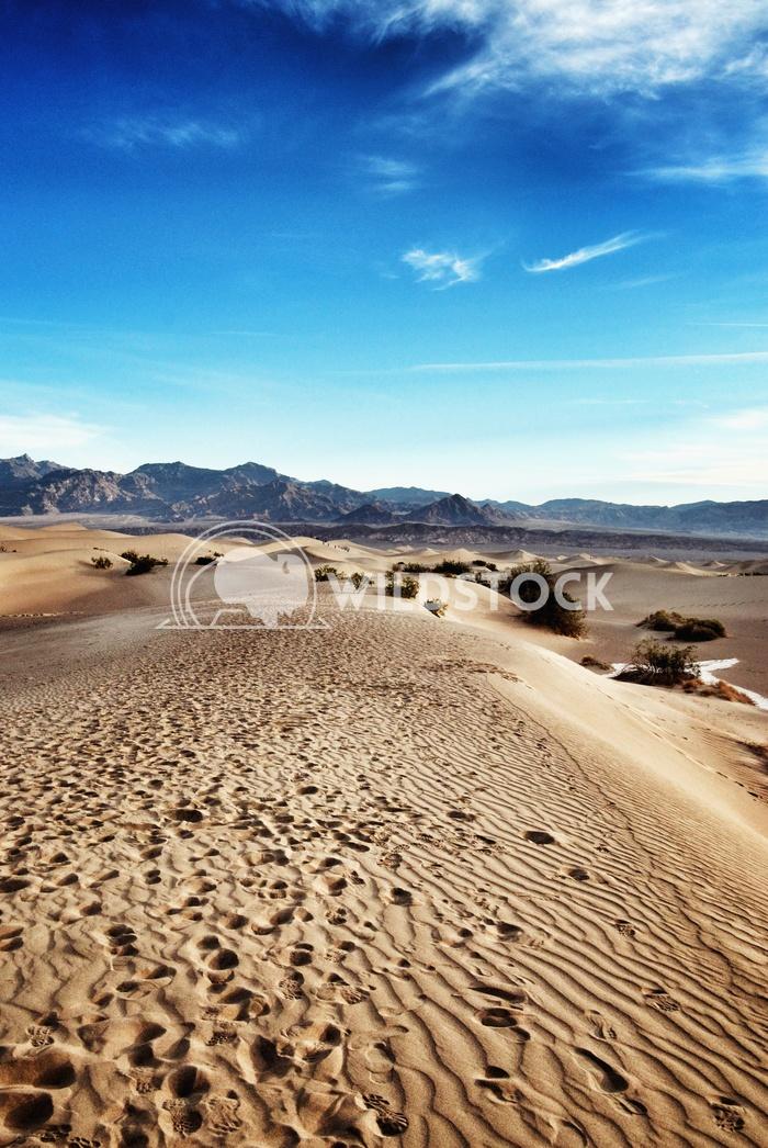 Desert Dunes Carolyne Vowell Death Valley sand dunes.