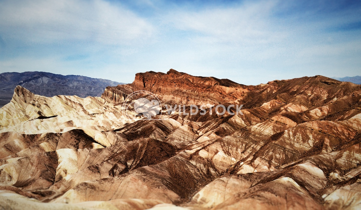 Desert Color Carolyne Vowell The various colors of Death Valley.