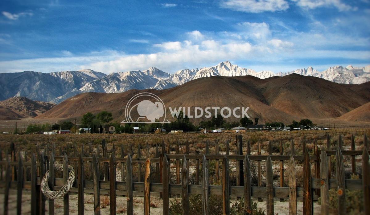 High Desert Mountain Town Carolyne Vowell