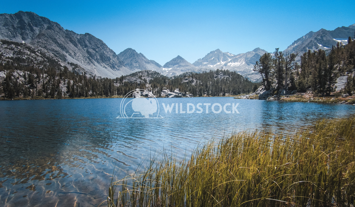 Summer Peaks Carolyne Vowell Mountain views from within the John Muir Wilderness.