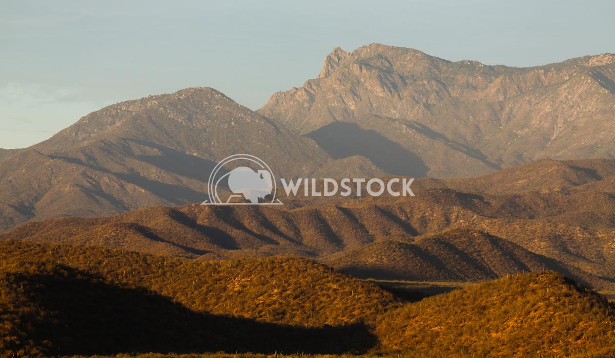 Baja Layers in Setting Sun Henry McCluster