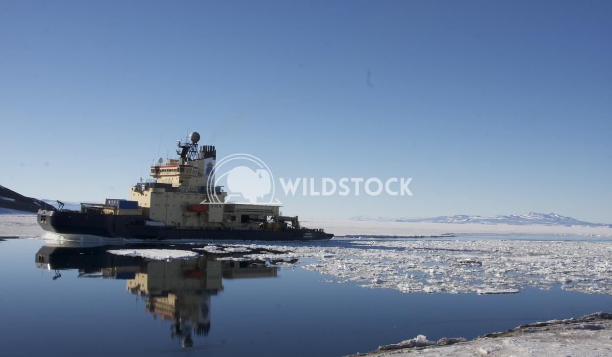 Old Russian Ice Breaker Laura Gerwin