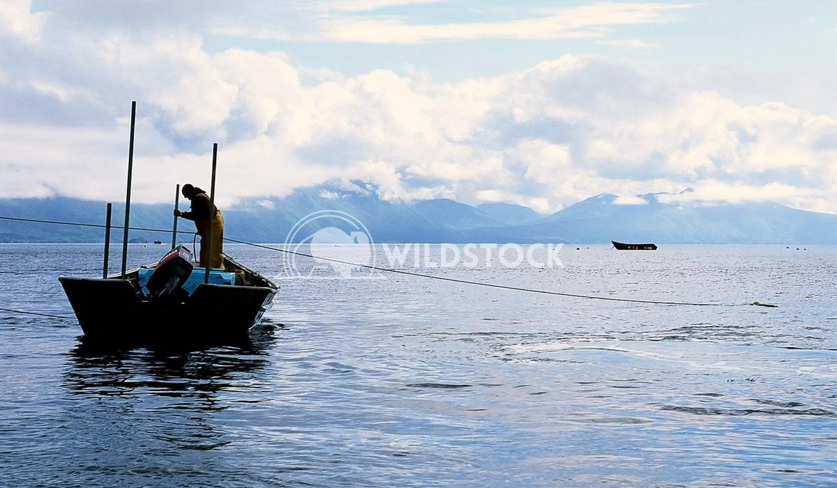 Bear Island, Kodiak, Alaska Devon Chivvis