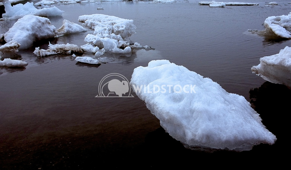 Melting Iceberg I,  Barrow, AK Devon Chivvis