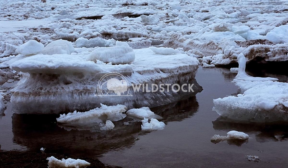Melting Iceberg IV,  Barrow, AK Devon Chivvis