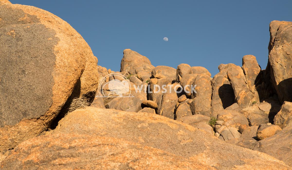 Land of Boulders Henry McCluster