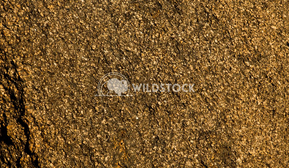 Sand Paper Sierra Henry McCluster