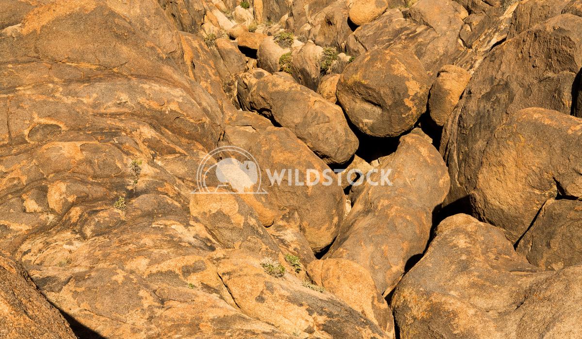 Hiding Spots Henry McCluster
