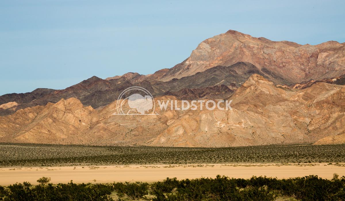 Desert Slopes Henry McCluster